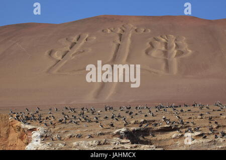 paracas candelabra - Stock Photo