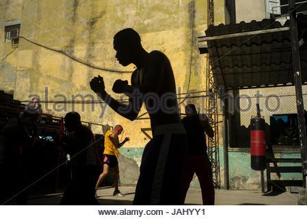 Boxers practice at the Gym Rafael Trejo in the La Habana Vieja district. - Stock Photo