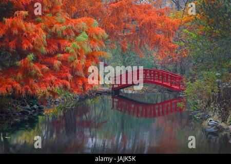 Red Footbridge, Japanese Garden, Autumn - Stock Photo