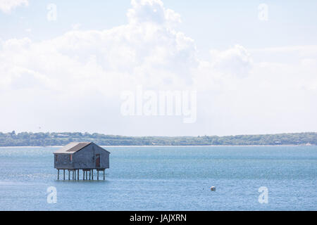 house on stilts in the water in eastern long island, ny - Stock Photo