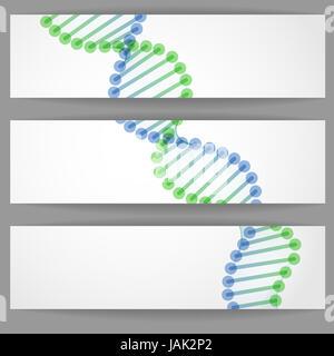 DNA Molecule Background.  Vector Illustration. Eps 10. - Stock Photo