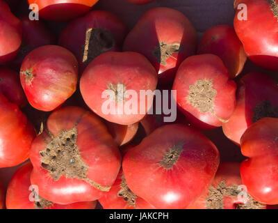 The daily outdoors market in Şəki (transcribed Shaki or Sheki) in northern Azerbaijan offers produce from a fertile - Stock Photo