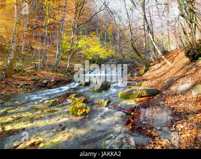 Beautiful fast river in mountain forest at sunrise - Stock Photo