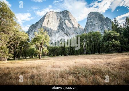 Yosemite half dome with meadow - Stock Photo
