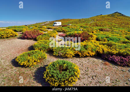 Motorhome alone in the middle of green mountain vegetation with yellow and violett flowers in blossom - Stock Photo