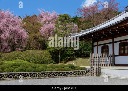 Traditional architecture and garden of Kuri building in the Ryoanji temple - Stock Photo