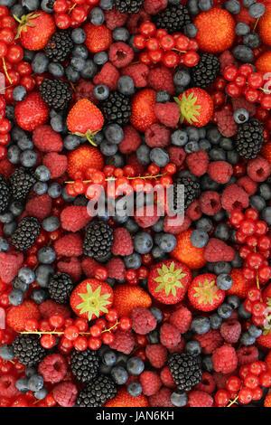 Frische Früchte wie Erdbeeren, Blaubeeren, Himbeeren und Johannisbeeren bilden einen Hintergrund - Stock Photo