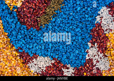 Colorful texture of chemically treated corn maize crop seed ready for seeding - Stock Photo