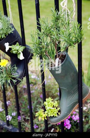 Boots and Plantholders Hanging on Railing - UK - Stock Photo