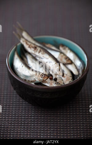 bowl of whole anchovies on kitchen table - Stock Photo