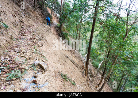 travel to China - tourist walks on path through mudslide on mountain slope in Dazhai country of Longsheng Rice Terraces - Stock Photo
