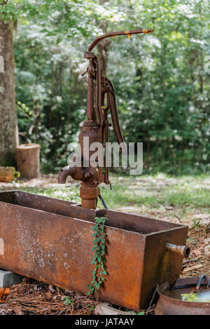 Old style rusty hand pump and water trough in rural Alabama, USA.