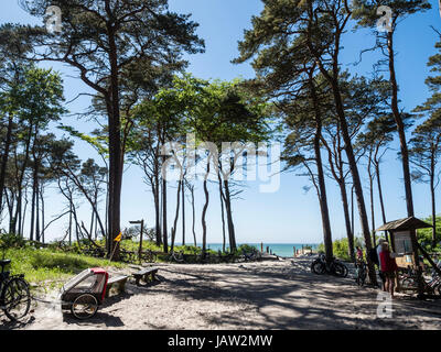 Bicycle parking lot at the beach 'Weststrand' west of Prerow, beach access,  Baltic Sea, peninsula of Fischland - Stock Photo
