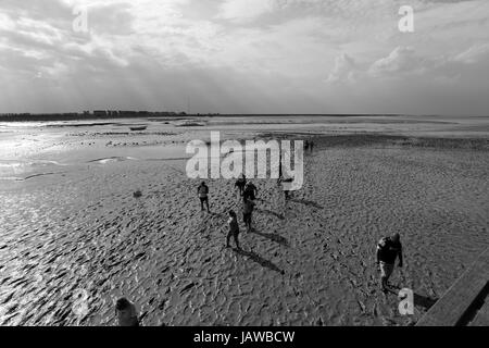 Sand Walkers, people walk on sand at low tide on Normandy coast - Stock Photo