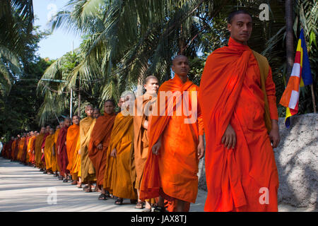 Hundreds of Buddhist monks walk in a line at the Dhammarajika Bouddha Mohabihar in Dhaka during the 'Kathin Chibar - Stock Photo