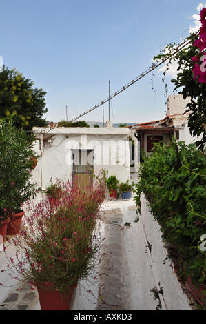 Narrow footpath with plants and small houses in the traditional Anafiotika neighborhood, village style architecture - Stock Photo