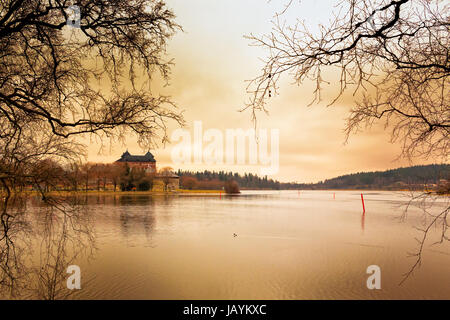 A lonely common goldeneye is swimming in the lake by the old Hame castle in the central Finland. The springtime - Stock Photo
