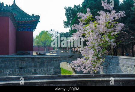 June 9, 2017 - Beijin, Beijin, China - Palace of Abstinence lies to the northwest of the Circular Mound Altar and - Stock Photo