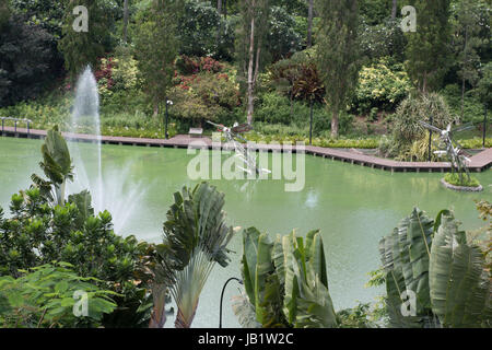 Dragonfly pond in Gardens by the Bay Singapore - Stock Photo