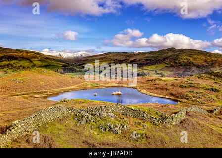 Lovely Lily Tarn on Loughrigg near Ambleside - Stock Photo