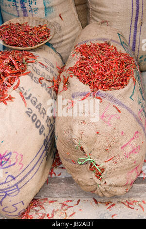 Sacks of chili for sale in the spice market of Old Delhi, India - Stock Photo