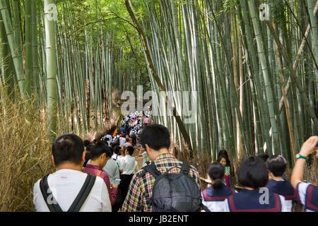 Tourists in bamboo forest in Arashiyama, Kyoto, Japan. - Stock Photo