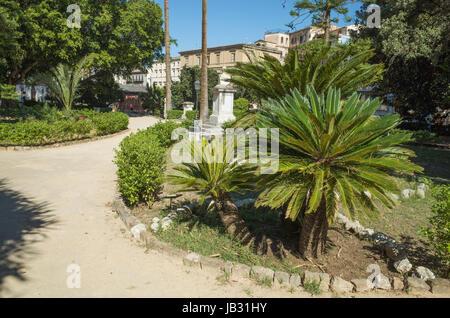 Palm trees in Giardino Garibaldi Villa, Palermo, Italy - Stock Photo