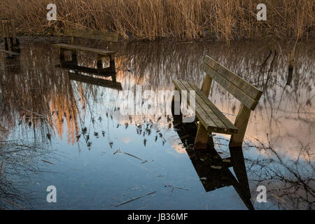 Sitting benches on water with sky, clouds and plants reflections - Stock Photo