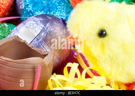 Close-up of a yellow fluffy chick toy beside a chocolate egg with a pile of colorful eggs and grasses in the background. - Stock Photo
