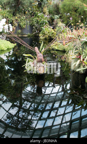 Steel sculpture of a dragonfly in the Cloud Forest in Gardens by the Bay Singapore - Stock Photo
