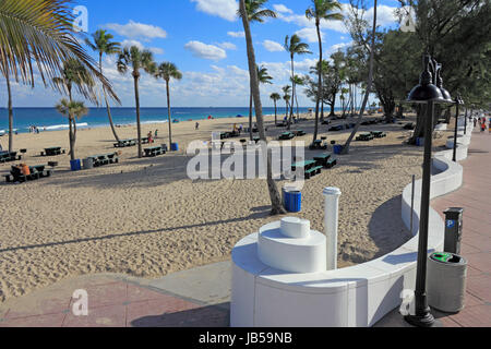 FORT LAUDERDALE, FLORIDA - JANUARY 23, 2014: People relaxing in and near a large area with few dozen green picnic - Stock Photo