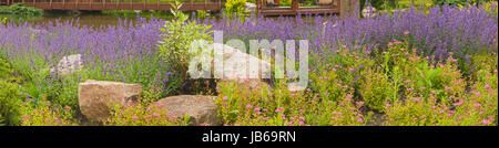 Panorama of beautiful flowers on the shore of the lake in the tract Mezhigorye near Kiev. - Stock Photo