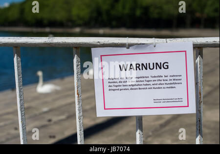 Berlin, Germany. 2nd June, 2017. An official sign warns of poison, which has killed several dogs in the area around Tegeler See lake in Berlin, Germany, 2 June 2017. Photo: Lino Mirgeler/dpa/Alamy Live News Stock Photo