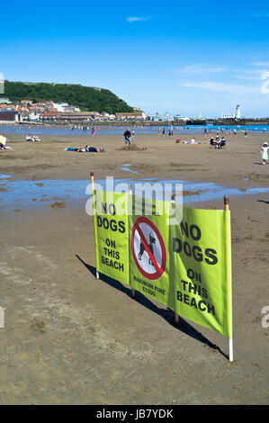 South Bay SCARBOROUGH NORTH YORKSHIRE No dogs allowed sign dog beach - Stock Photo