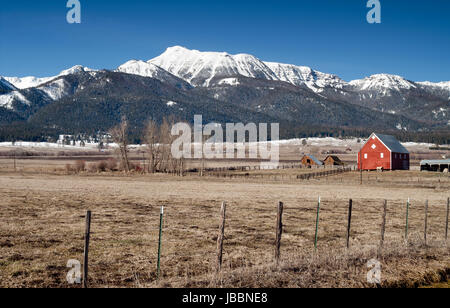 Red Barn Shelters Old Mare on Horse Ranch - Stock Photo