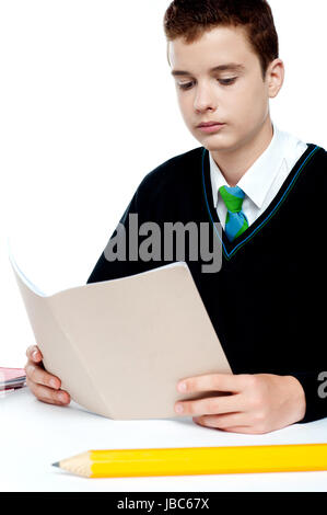 Boy reading notebook with big pencil lying in front of him on study desk - Stock Photo