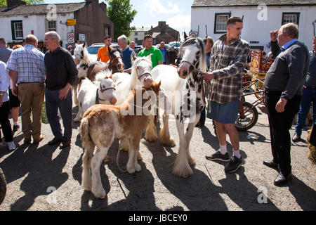 Appleby-in-Westmorland, U.K. 9th June 2017. Gypsies and Horse Dealers discuss prices at the Appleby Horse Fair. - Stock Photo