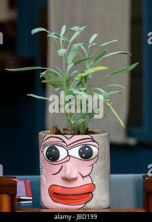 A plant in a beautiful folk art flower pot at an outdoor restaurant on Bowery in the East Village section of lower - Stock Photo