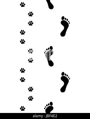 41f7c814da7c Prints of human feet and dog paws,seamless pattern, vector - Stock Photo