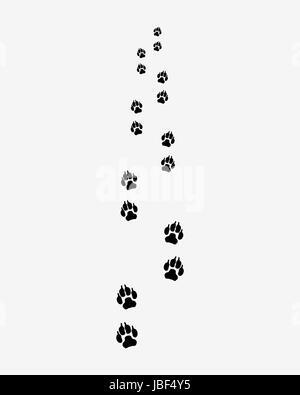 Black trail of dog, forward, vector illustration - Stock Photo