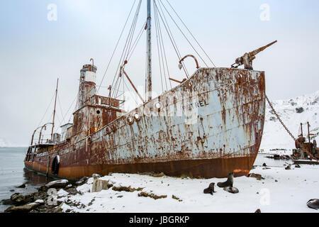 Whaling ship at Grytviken, South Georgia Island - Stock Photo