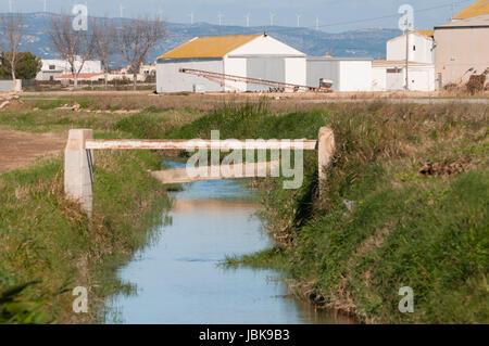 Delta de l'Ebre scenery. Rural view at Delta de l'Ebre. River Ebro Landscape. - Stock Photo