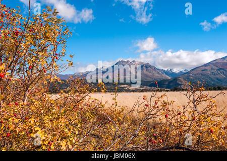 Autumn Colors in El Boliche, Bariloche, Patagonia, Argentina - Stock Photo