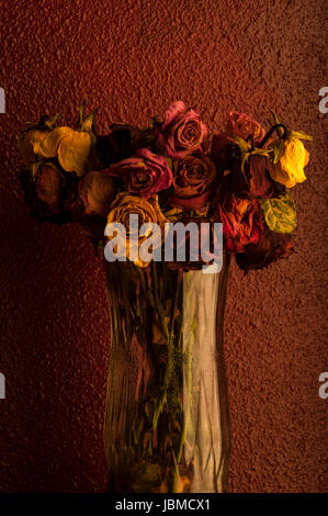 Multicolored roses wilting in glass vase with warm sunset light - Stock Photo