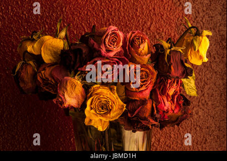 Multicolored roses wilting in glass vase with warm window light - Stock Photo