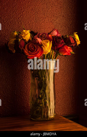 Multicolored roses wilting in glass vase with window warm window light - Stock Photo