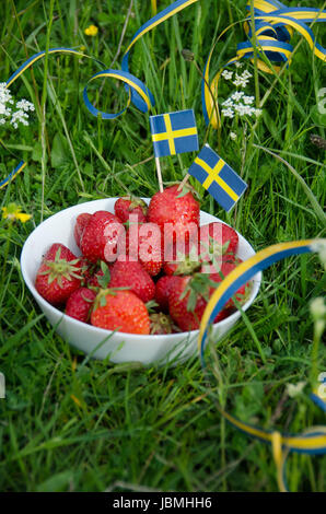 Freshly picked strawberries in a white bowl of porcelain in the grassy meadow. Swedish holiday celebration - Stock Photo