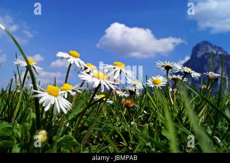 the best austria - Stock Photo