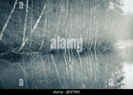 Foggy landscape with gloomy mood and lake at toned photo - Stock Photo