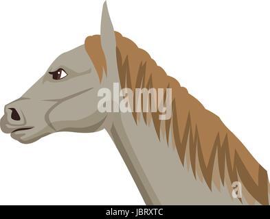 horse cartoon farm mammal animal icon - Stock Photo